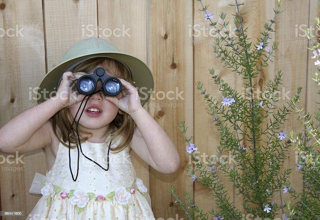 Safari in the Backyard royalty-free stock photo