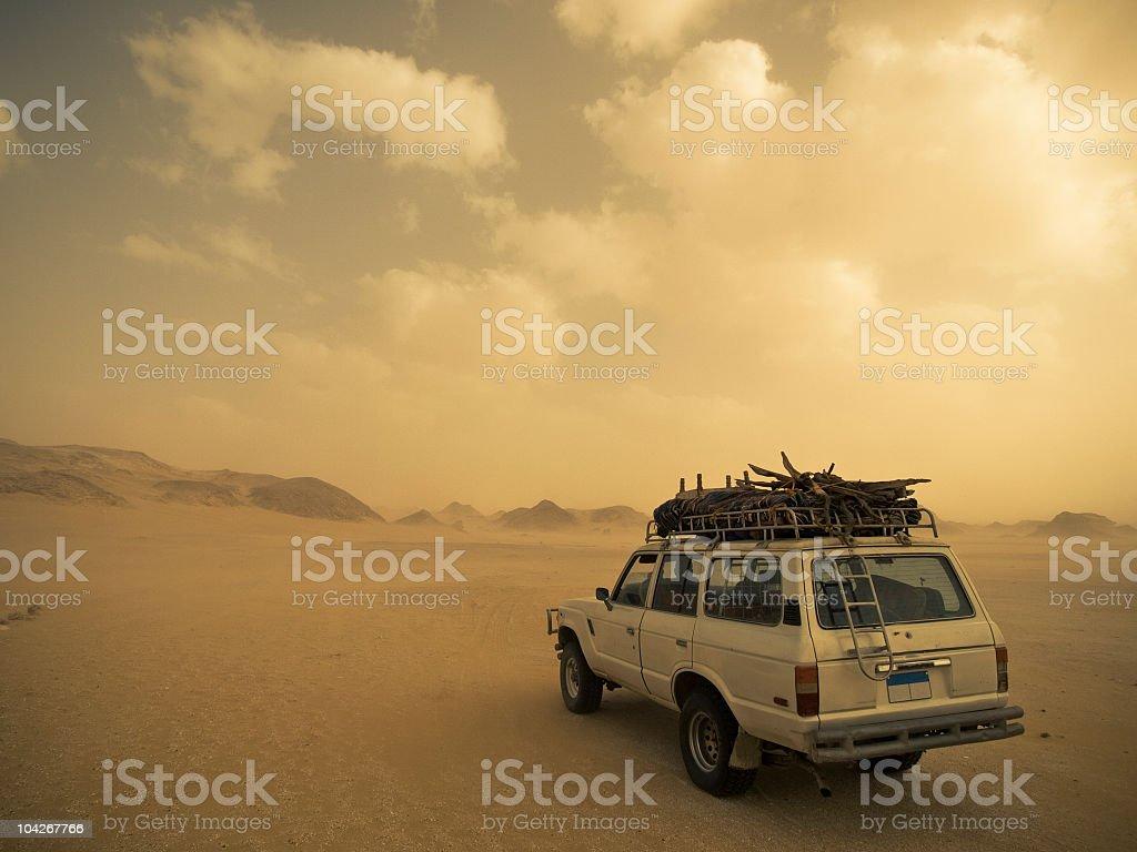 safari in the sandstorm stock photo