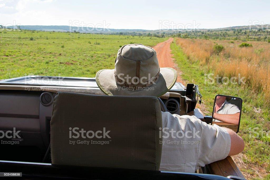 Safari ranger driving a safari jeep stock photo