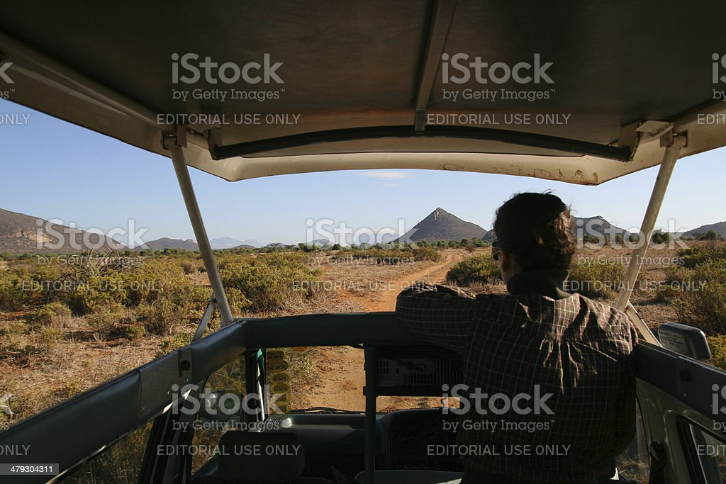 Safari tourist stock photo