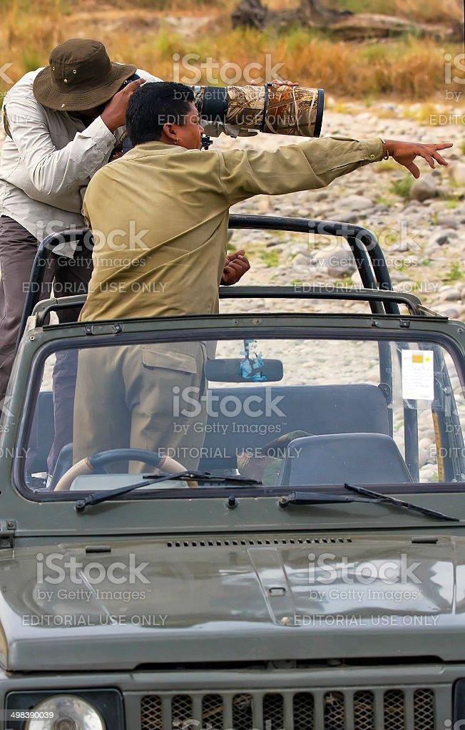 Safari tourist taking photos at wildlife stock photo