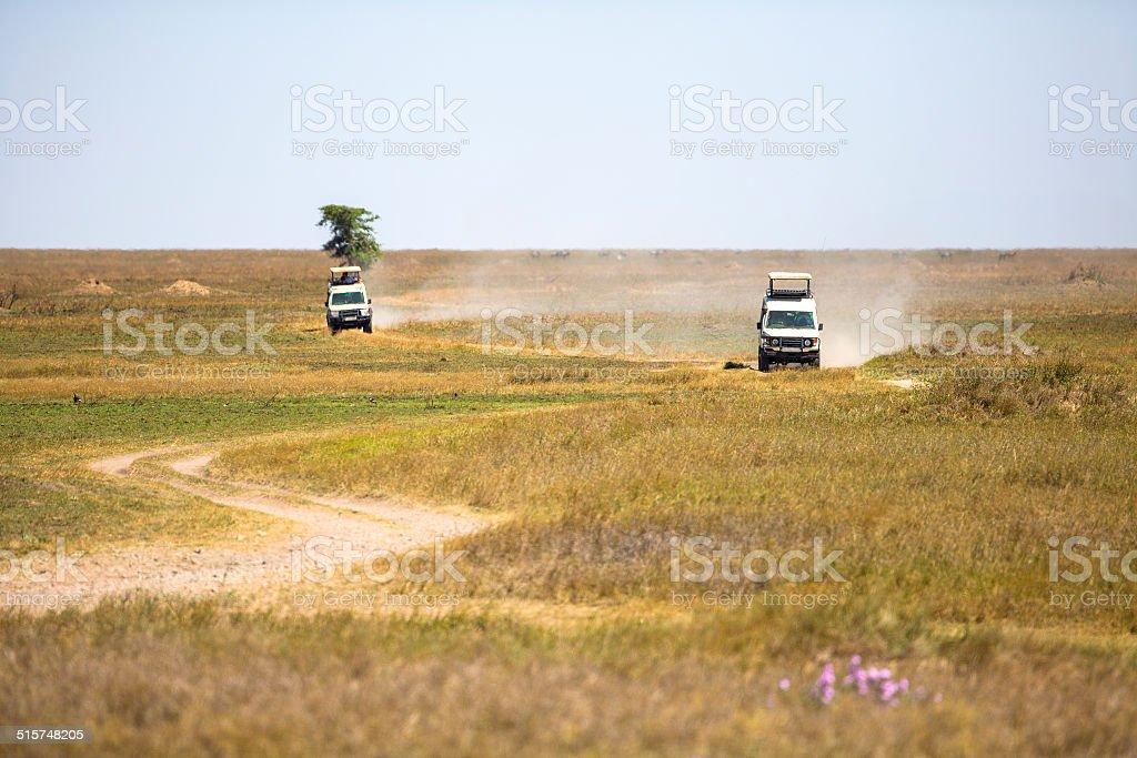Safari tourists on game drive in Serengeti stock photo