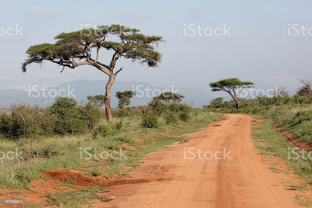 Safari track in Kenya royalty-free stock photo