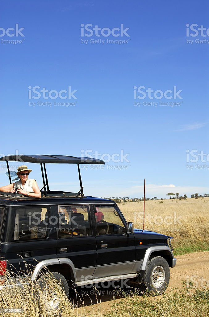 Safari trip in the Serengeti National Park,Tanzania royalty-free stock photo