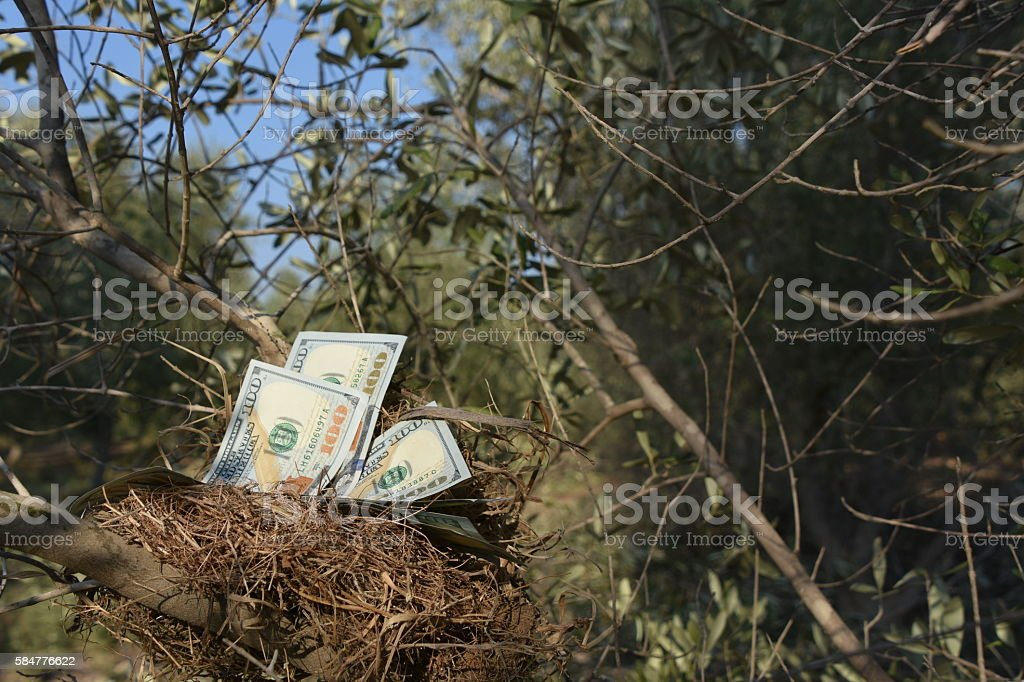 Safe investment Concept stock photo