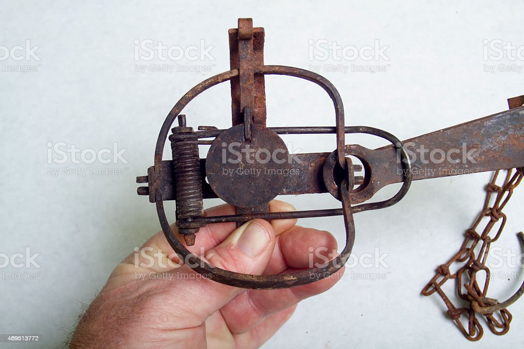 Safely Handling A Antique Stop Loss Long Spring Trap stock photo