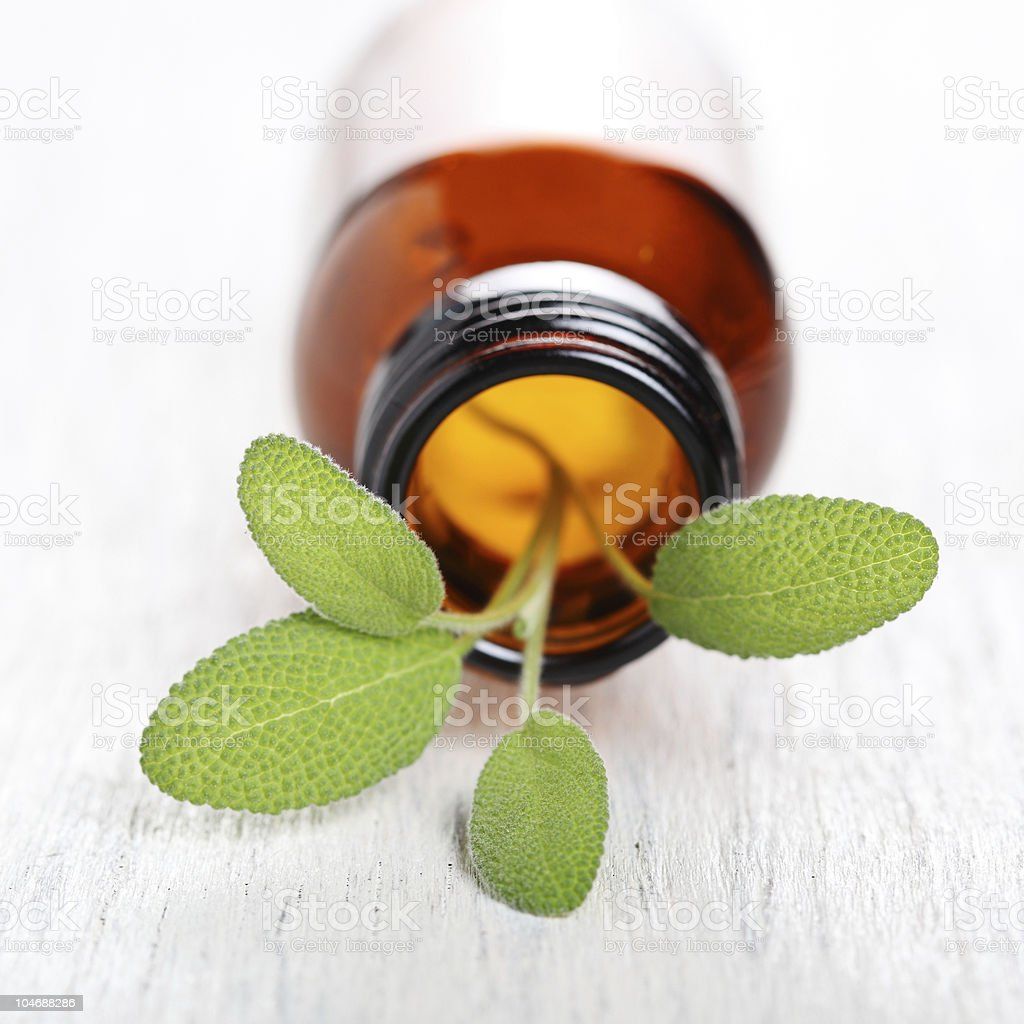 Sage herb leaves and an aromatherapy essential oil bottle royalty-free stock photo
