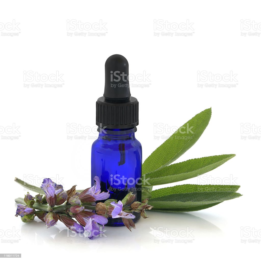 Sage Herb Therapy royalty-free stock photo