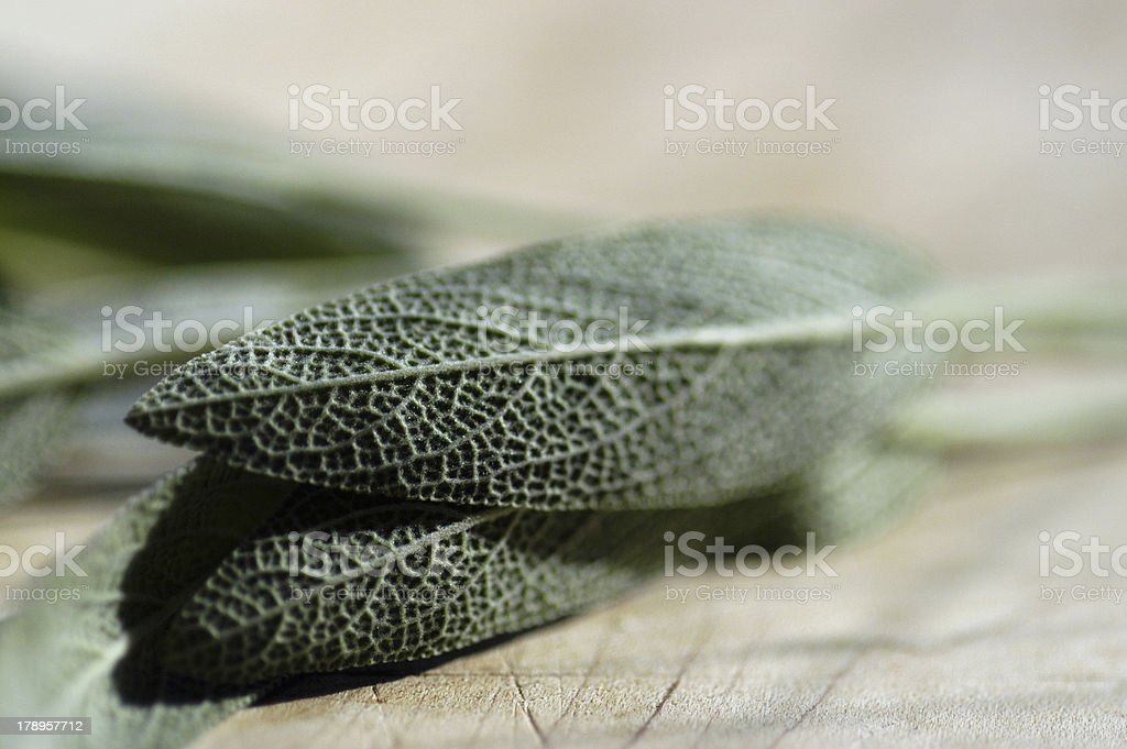 Sage on cutting board stock photo