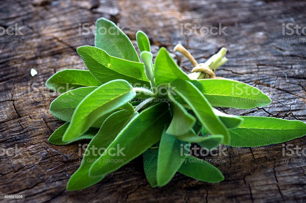 Sage on wooden background stock photo
