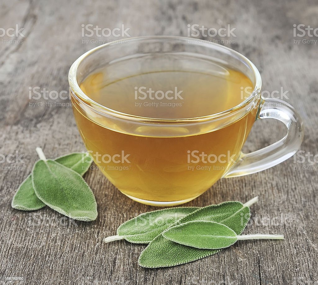 Sage tea royalty-free stock photo