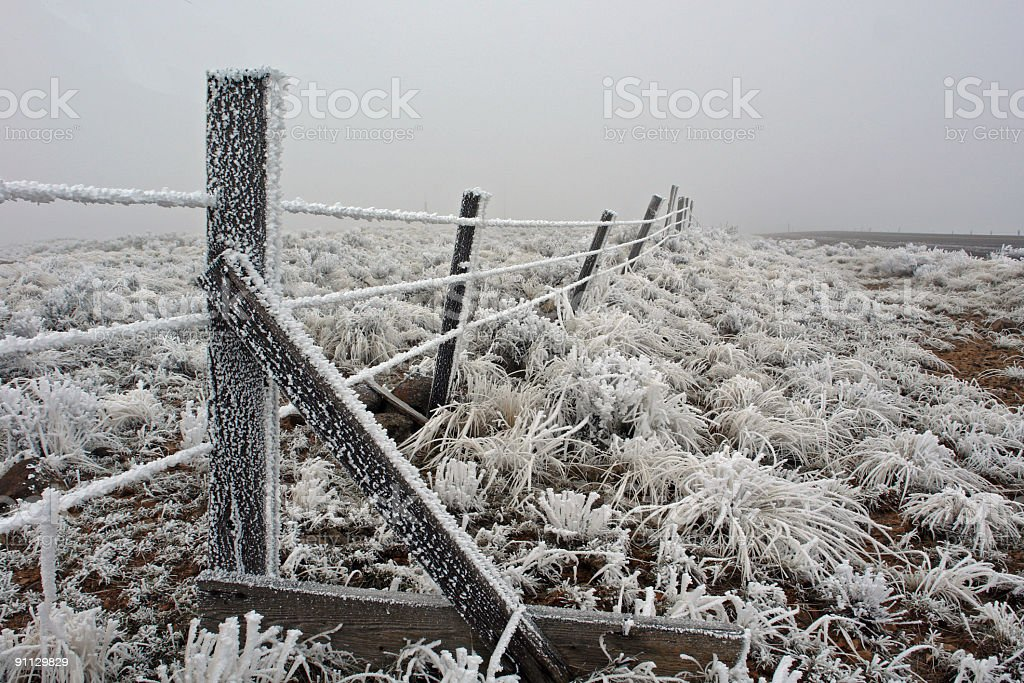 Sagebrush and Barbed Wire royalty-free stock photo