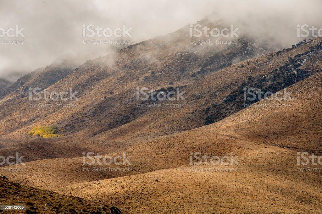 Sagebrush Country with Rider stock photo