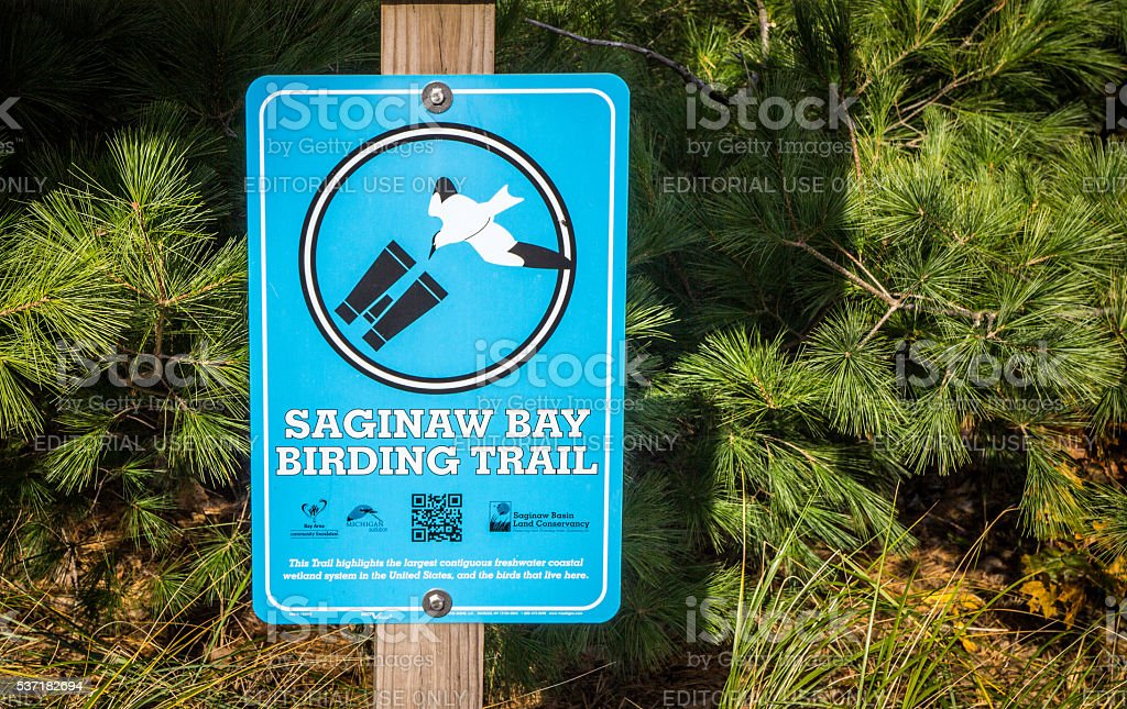 Saginaw Bay Birding Trail stock photo