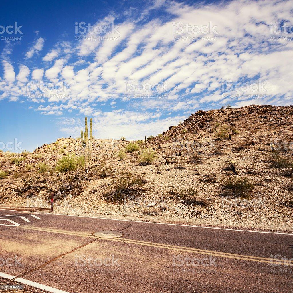 Saguaro national park view on phoenix royalty-free stock photo