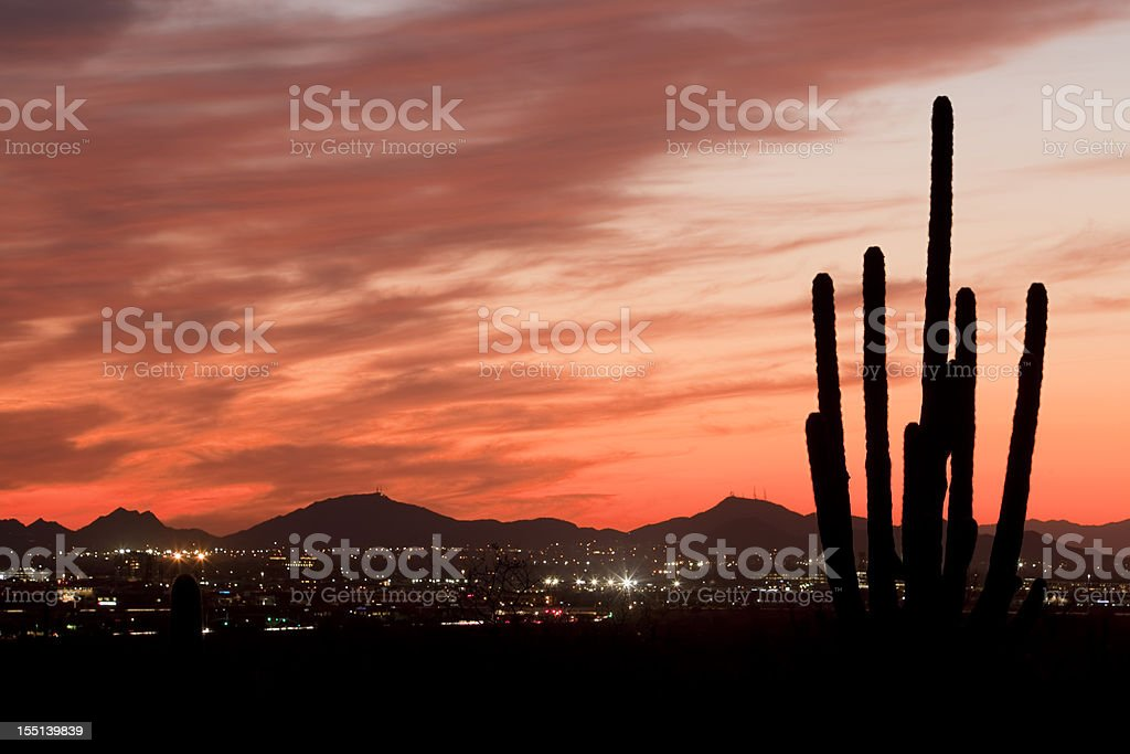 Saguaro Silhouette On Desert City Sunset royalty-free stock photo