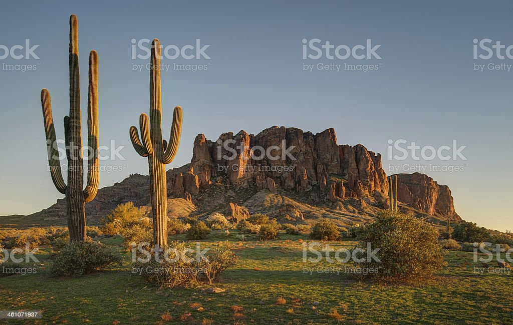 Saguaro Sunset and Superstition Mountains stock photo