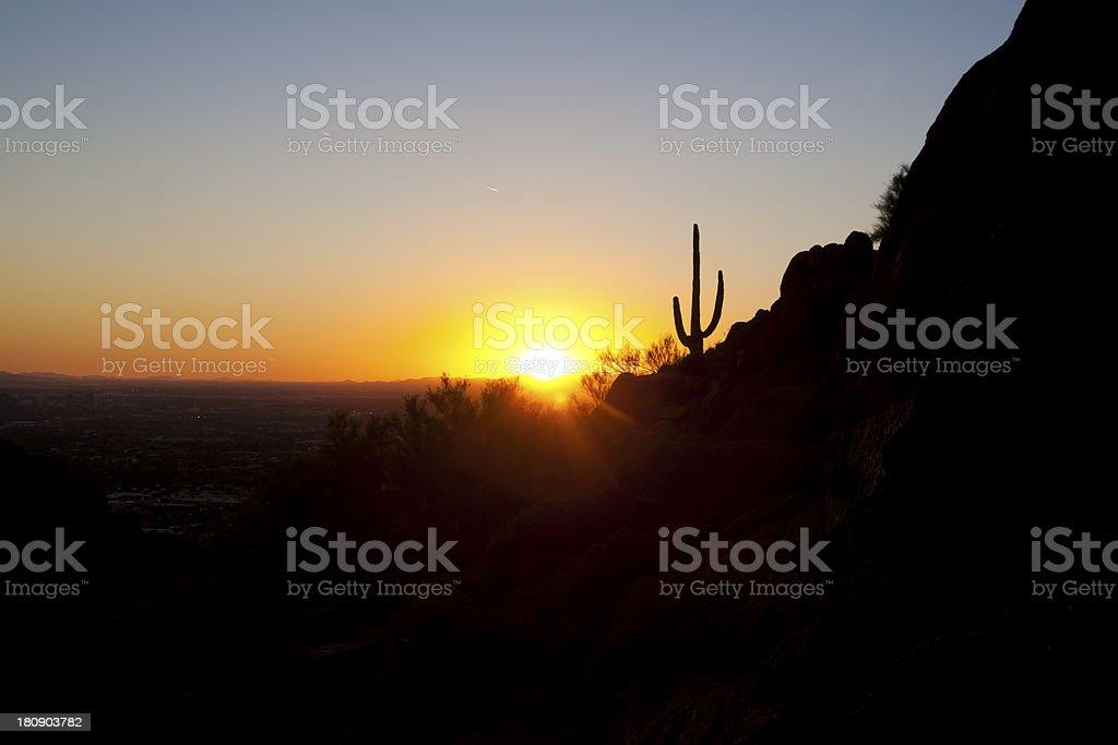 Saguaro Sunset #1 royalty-free stock photo