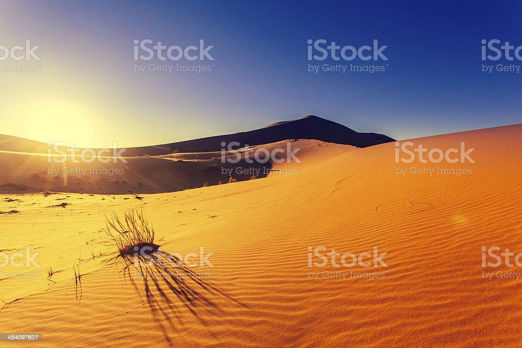 Sahara Desert Dune at Sunrise in Morocco royalty-free stock photo