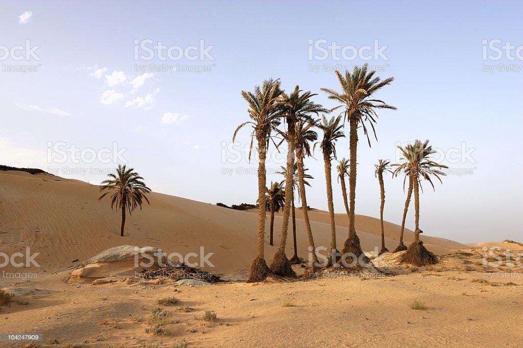 Sahara Desert royalty-free stock photo