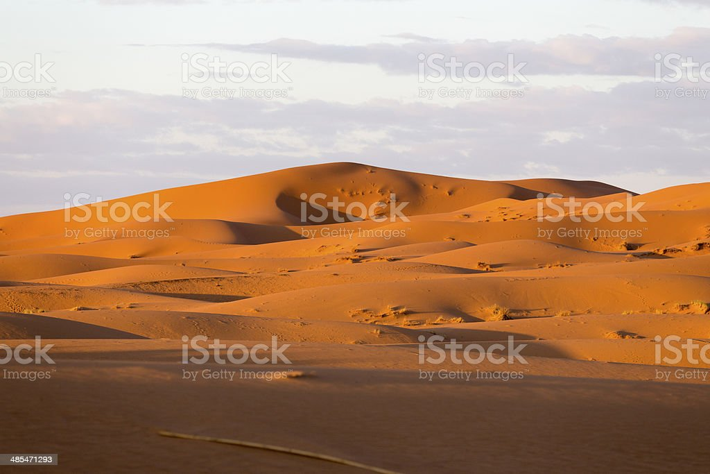 sahara desert royalty-free stock photo