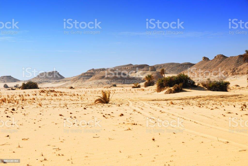 Sahara desert, Western desert, Egypt stock photo