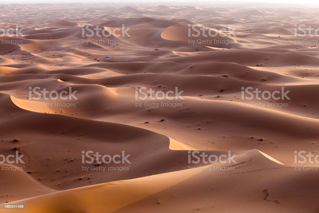 sahara dunes royalty-free stock photo