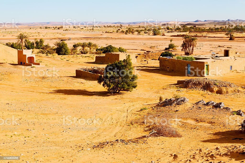 sahara      in morocco  palm  and  historical village stock photo