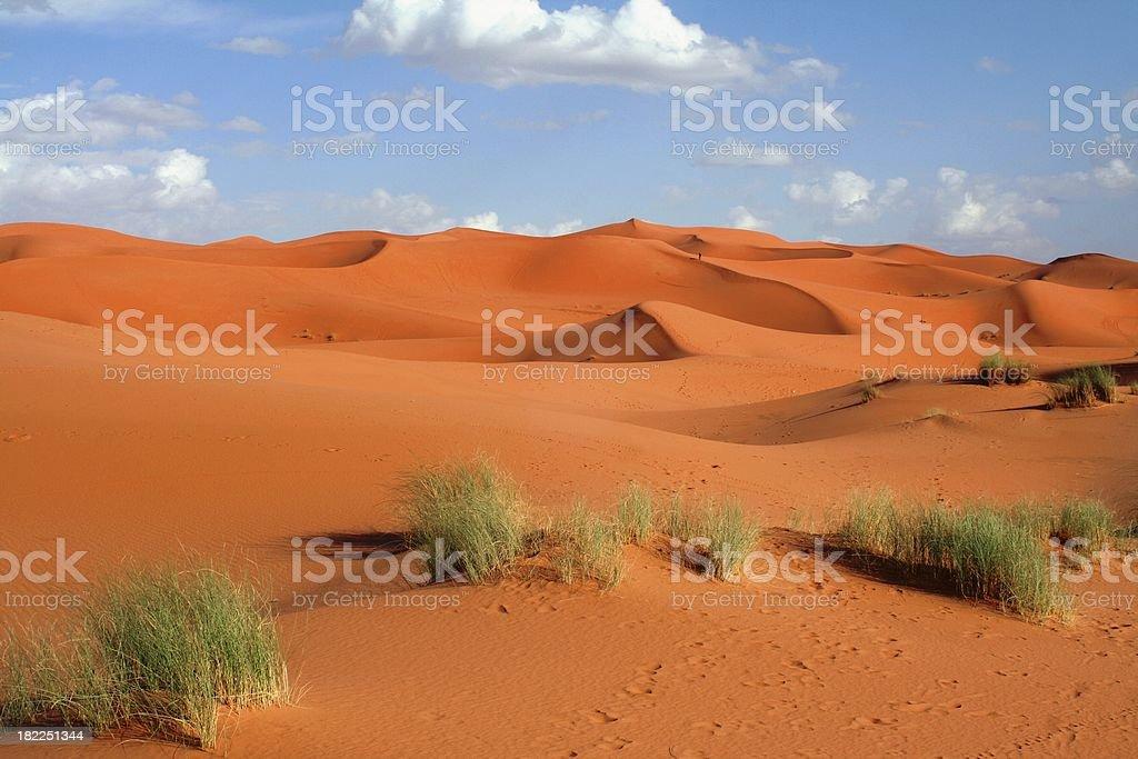 Sahara royalty-free stock photo