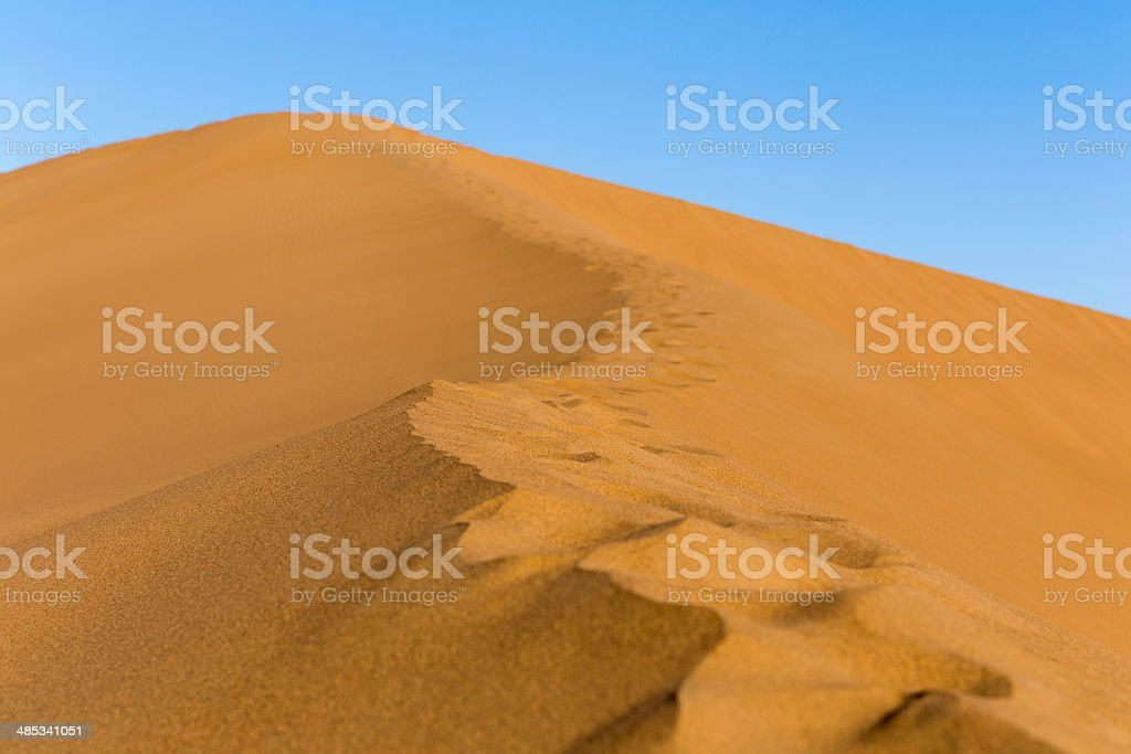 sahara sand dunes royalty-free stock photo