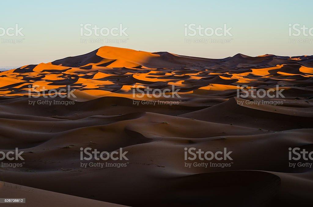 Sahara sunrise stock photo