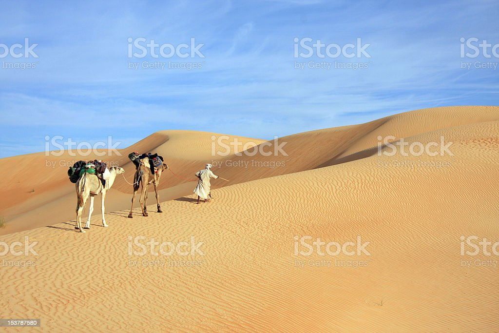 Sahara Trek stock photo