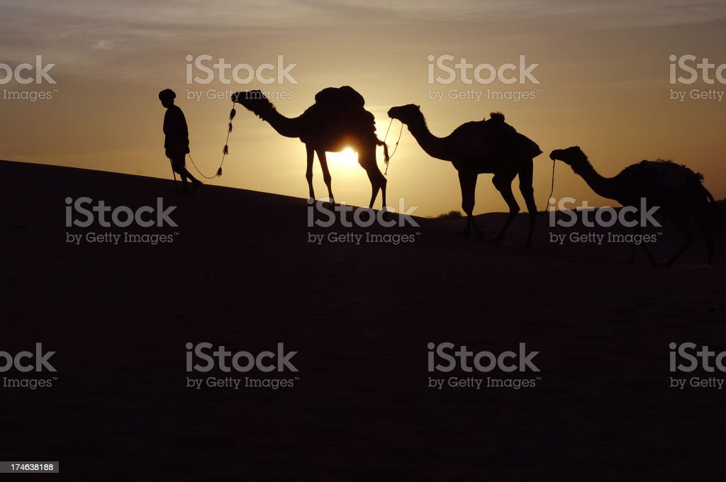 Saharan sunset royalty-free stock photo
