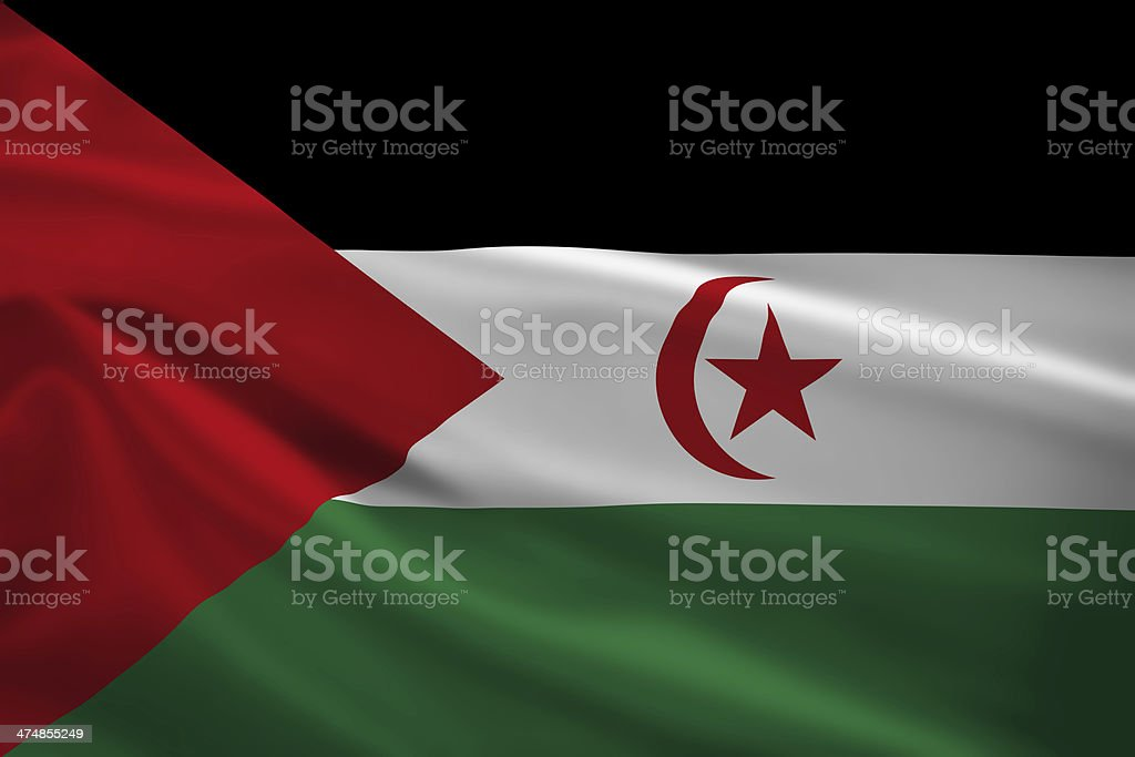 Sahrawi Arab Democratic Republic flag blowing in the wind stock photo