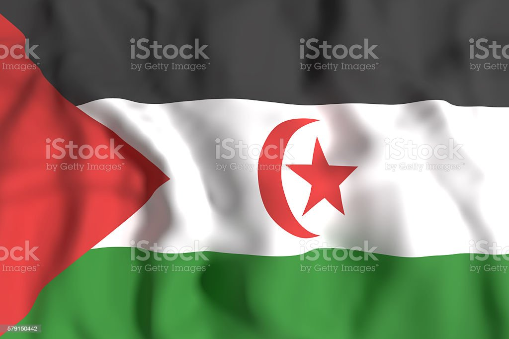 Sahrawi Arab Democratic Republic flag waving stock photo