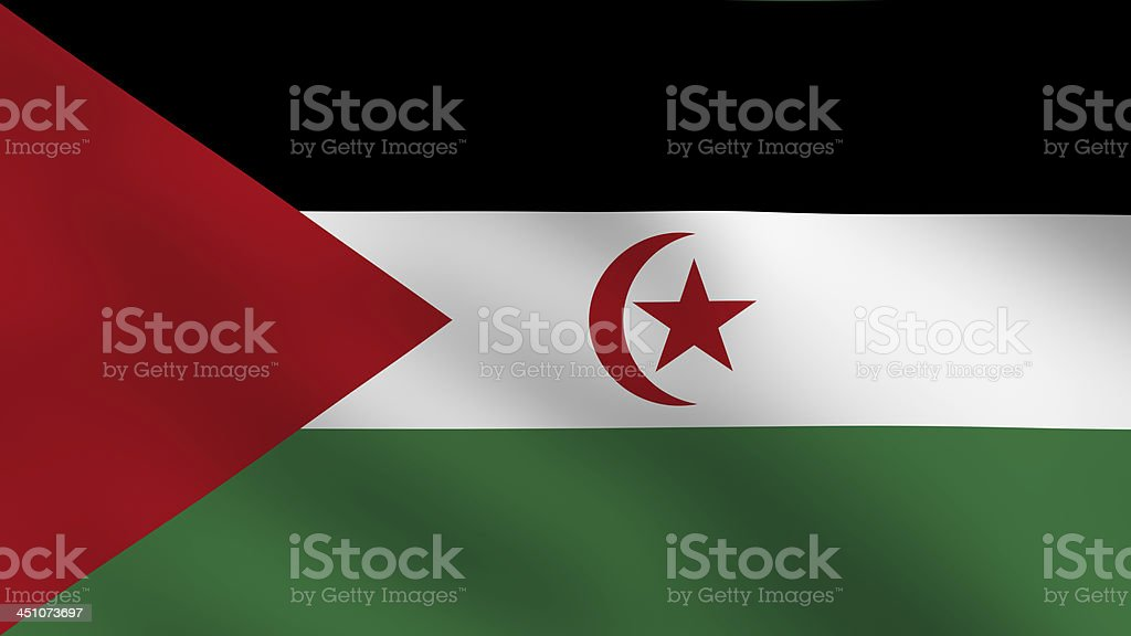 Sahrawi flag stock photo