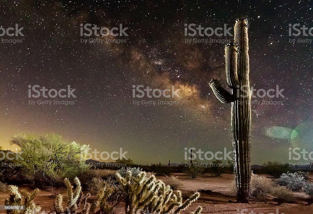 Sahuaro Milky Way Left stock photo