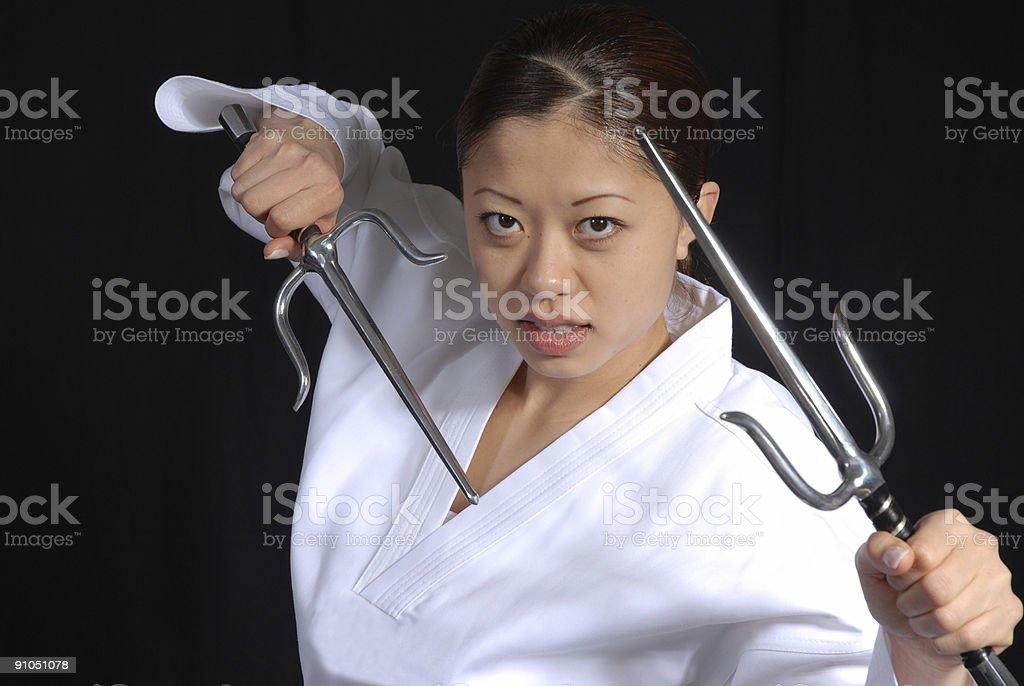 Sai defense stock photo