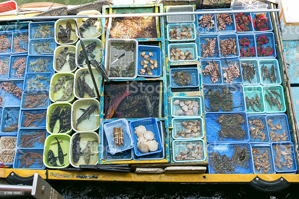 Sai Kung floating fish market in Hong Kong stock photo