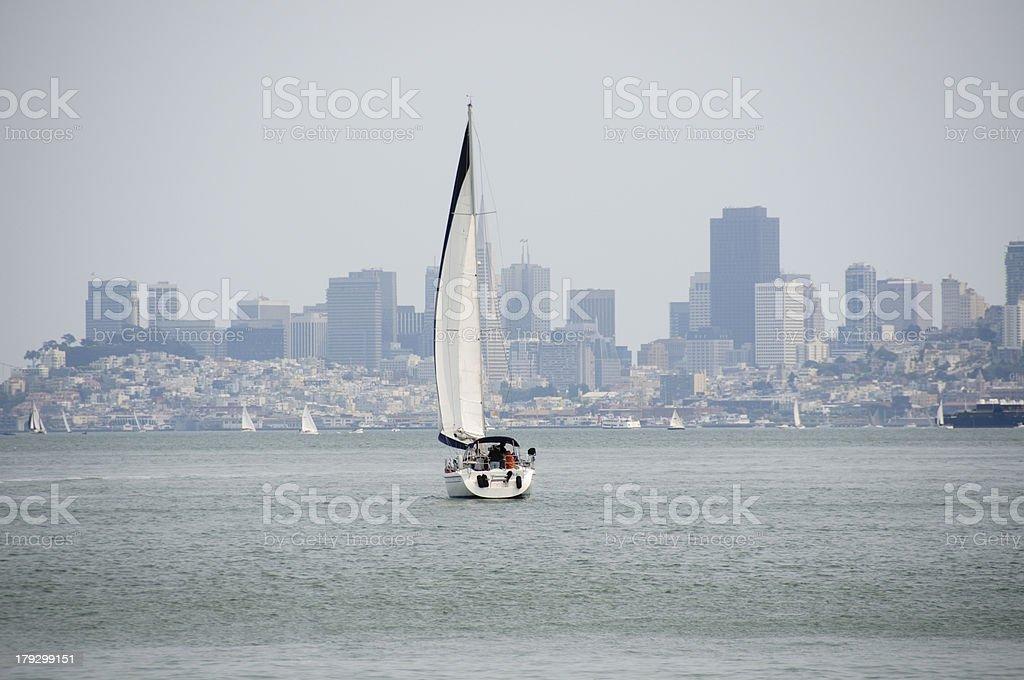 sail boat in san francisco bay royalty-free stock photo