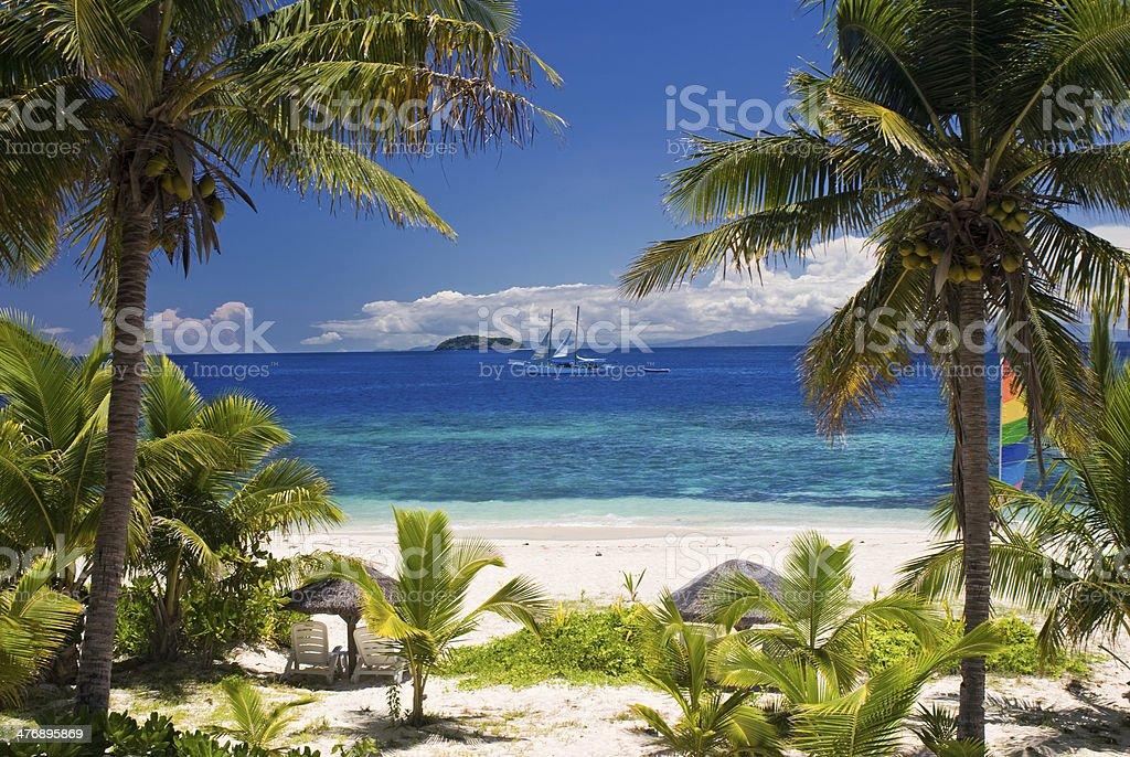 Sail boat seen through palm trees, Mamanuca Group islands, Fiji stock photo