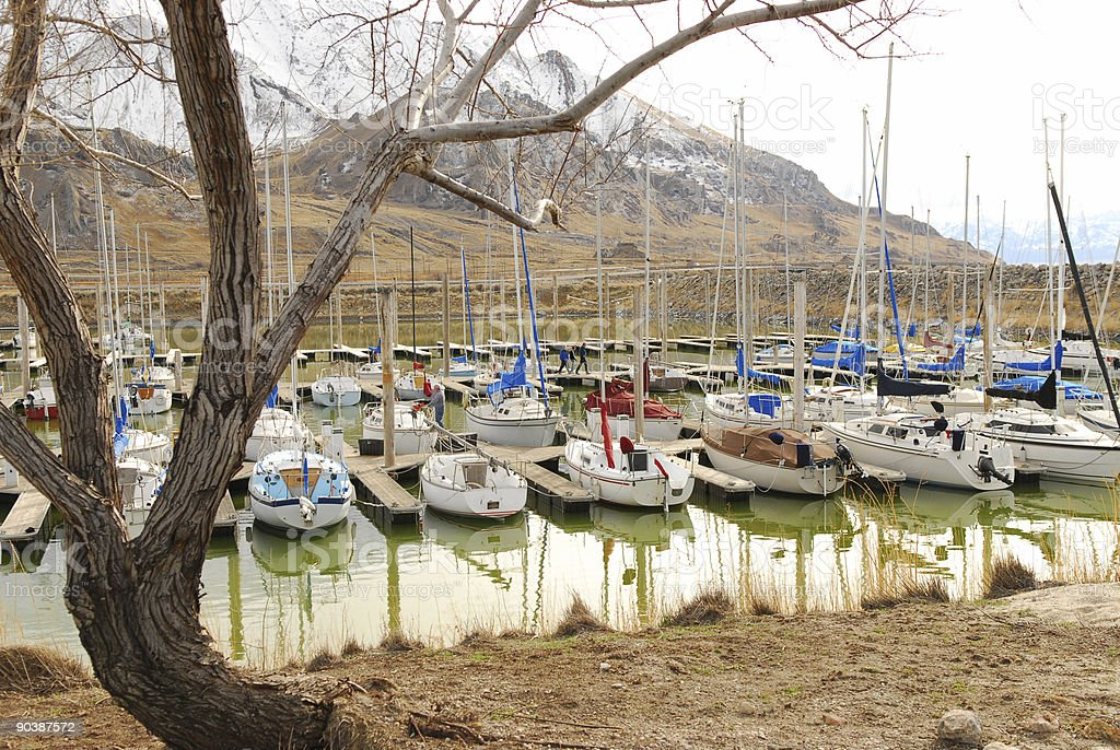Sail Boats in Slips. stock photo