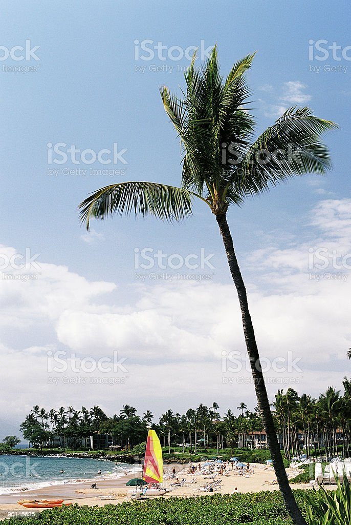 Sailboat beach scenic royalty-free stock photo