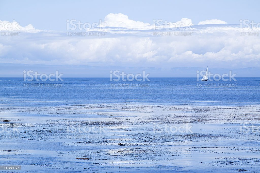 Sailboat in deep blue ocean water royalty-free stock photo