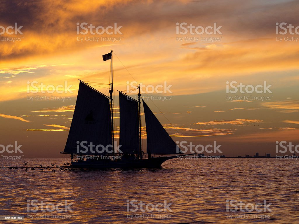 Sailboat in Gulf of Mexico stock photo
