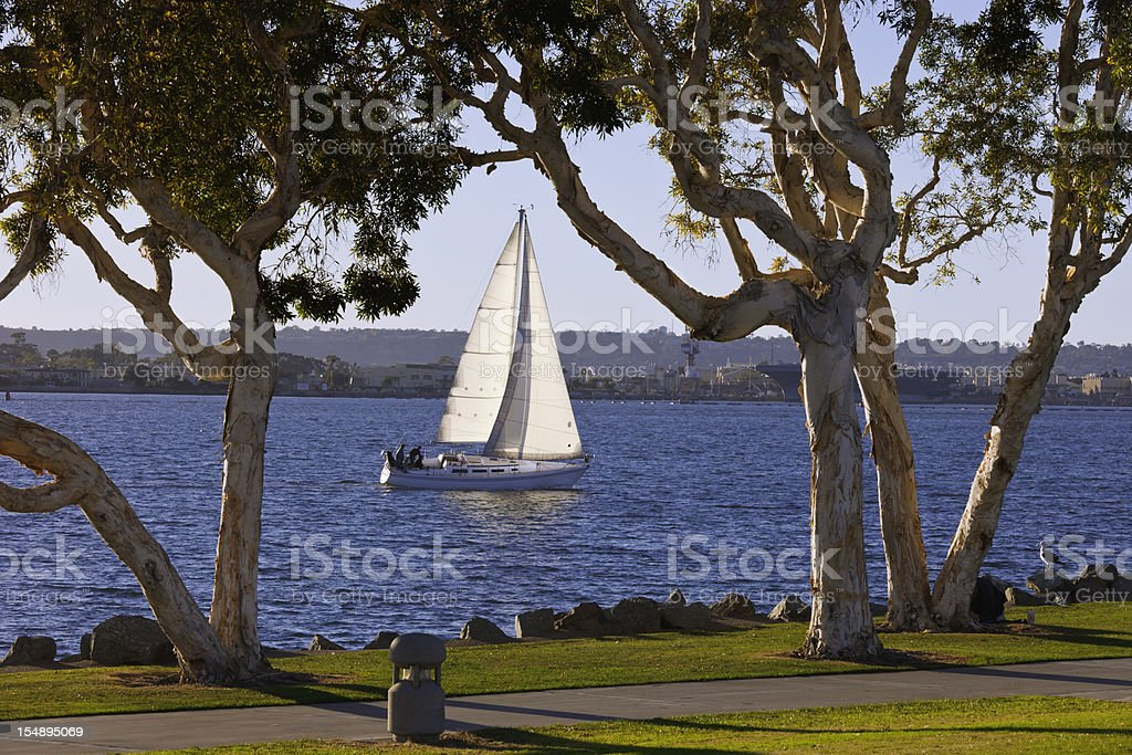 Sailboat In San Diego Bay royalty-free stock photo