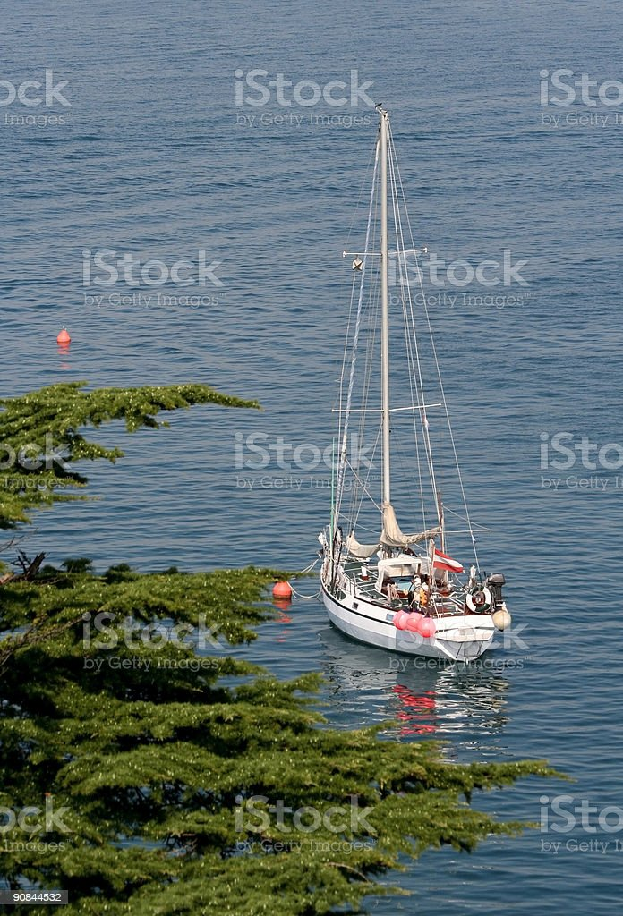 Sailboat in the bay royalty-free stock photo