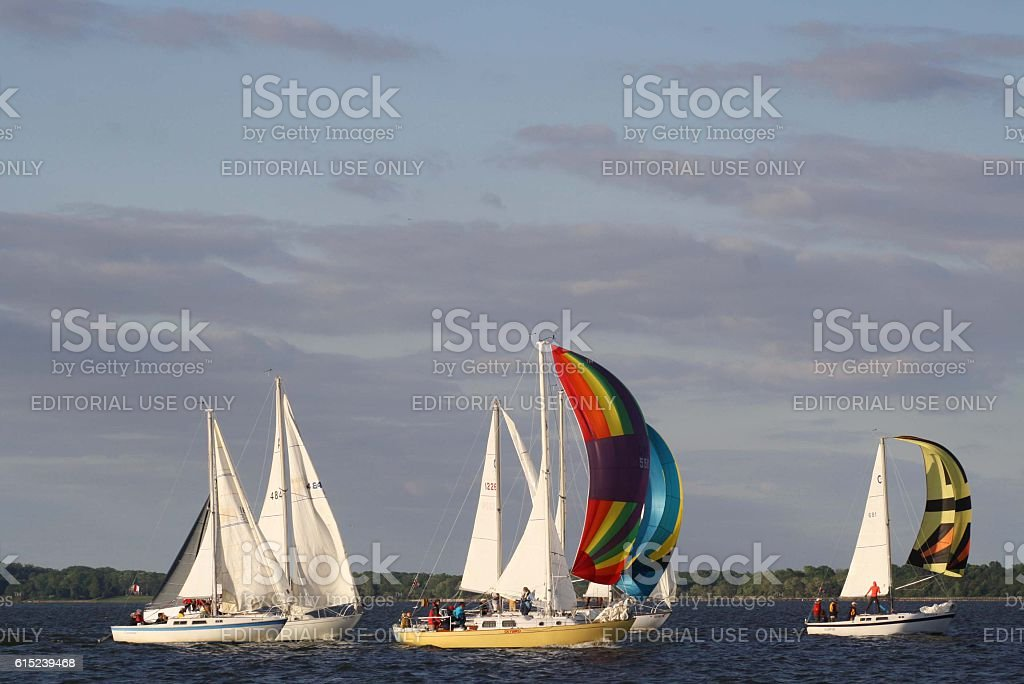 Sailboat Race on the Chesapeake Bay stock photo