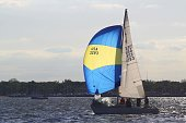Sailboat Race on the Chesapeake Bay