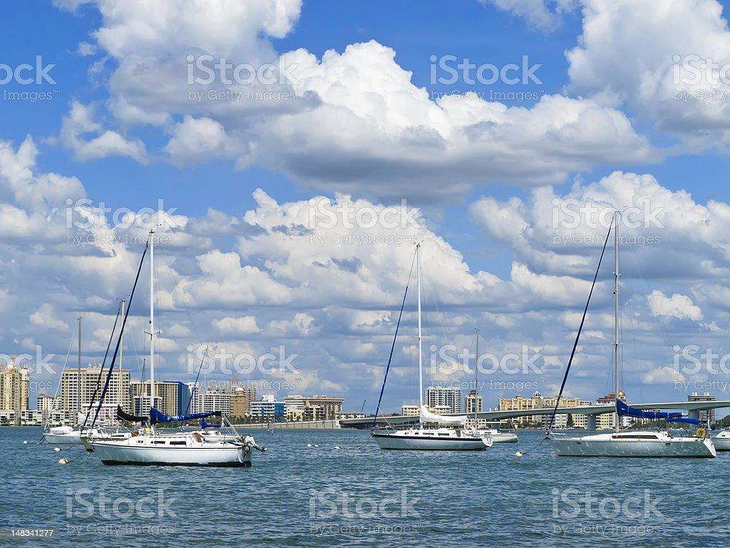 Sailboats and city skyline of Sarasota Bay stock photo